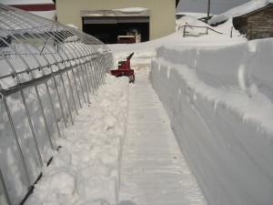 さらに機械で雪を飛ばし