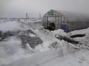 除雪機で少しずつ雪を飛ばす。