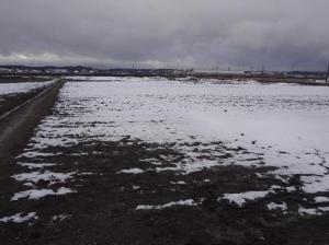 また雪が積もった!
