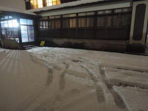 雪積もったー