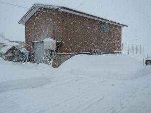 そしてまた大雪です・・・