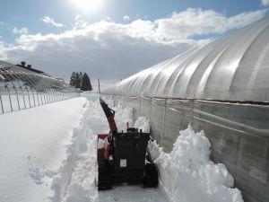 明る~い! 除雪も楽しい!