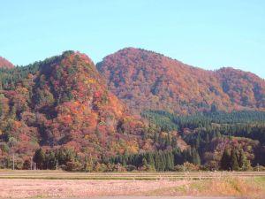 釜淵の紅葉