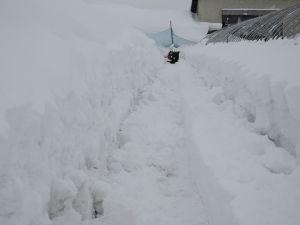 正月早々ハウスの除雪