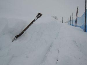 雪と格闘!