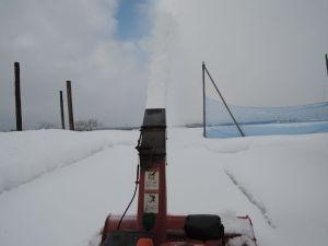 久々の除雪