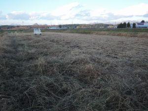 大豆収穫完了