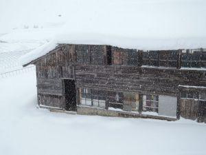 いきなり大雪降り続く