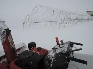 除雪機出動です。