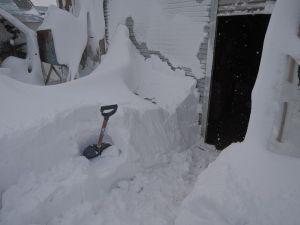 作業小屋も雪に埋もれ