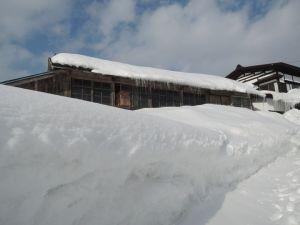 もう雪の捨て場がありません。