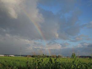 そして虹が出た。