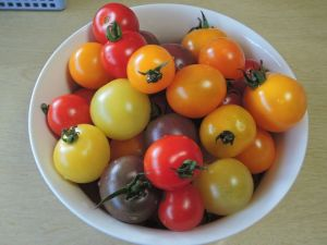 夏はトマト!