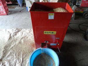 種籾の芒取り作業
