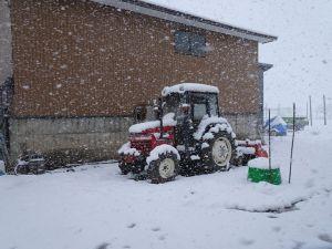 いきなり雪!